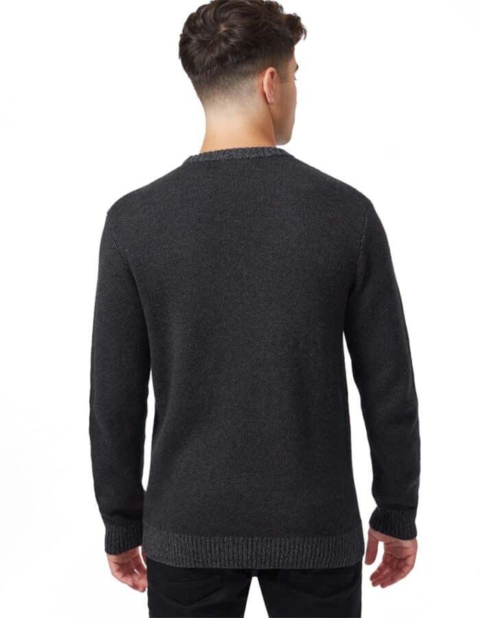 TenTree Highline Juniper biopamut pulóver férfi hátulról