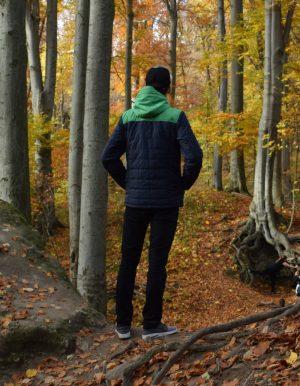 Transit férfi kabát ószi erdőben