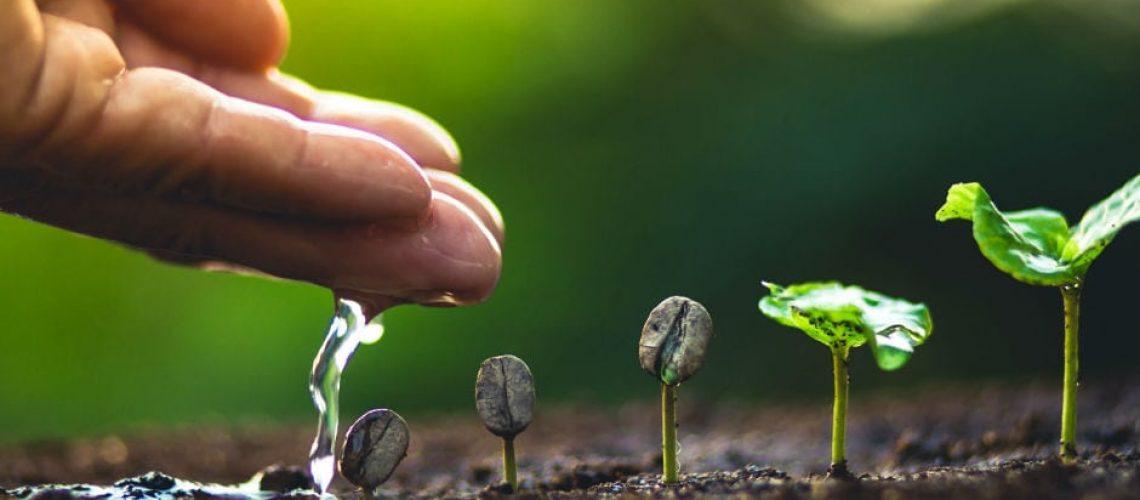 EcoWear-Tentree együtt könnyebb