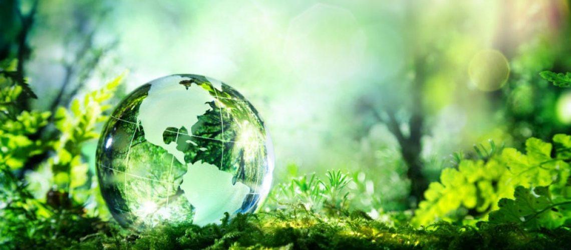 A föld világnapja 2020