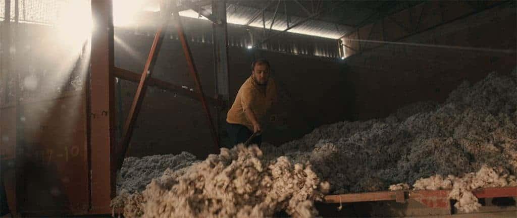 organikus pamut tisztítás